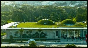 ravna-streha